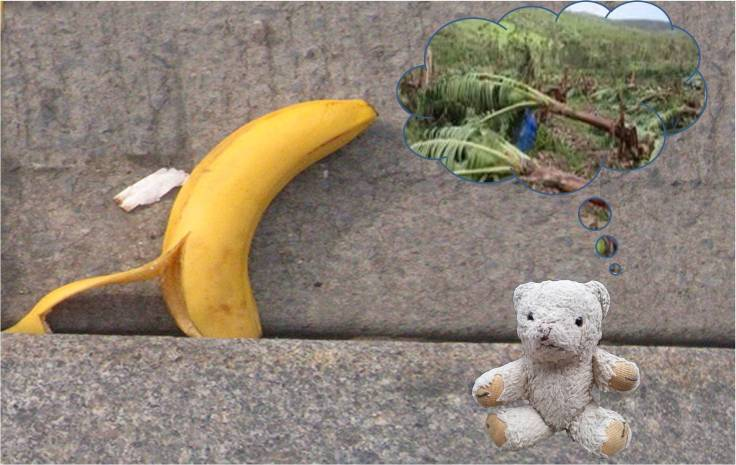 banana and wilf