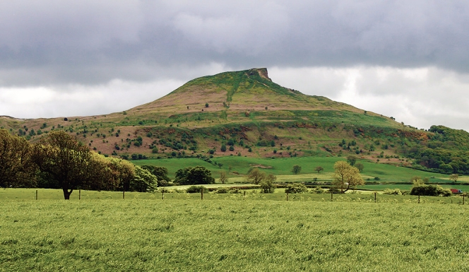 Roseberry_topping_north_side