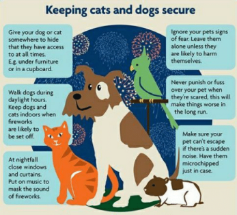 keeping-cats-and-dogs-secure-give-your-dog-or-cat-28758755.png